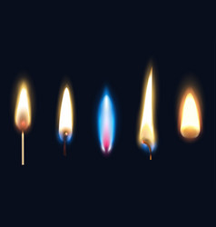 realistic burning flames set vector image