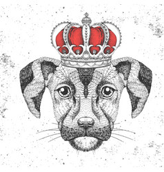Retro hipster animal dog in crown vector