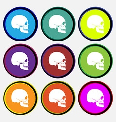 Skull icon sign Nine multi colored round buttons vector image