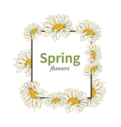 Spring flower frame background vector