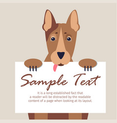 doberman with signboard isolated vector image