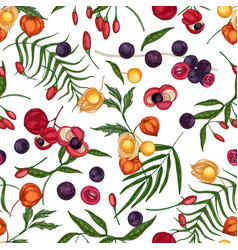 elegant seamless pattern with fresh goji acai vector image