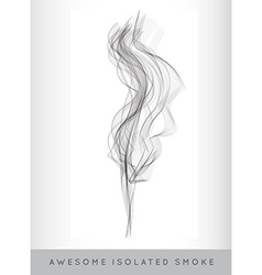 Realistic Cigarette Smoke or Fog or Haze with vector image vector image