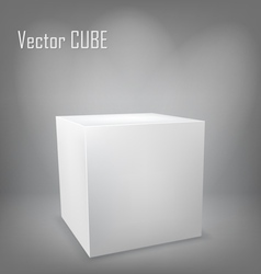 White cube on gray background vector image