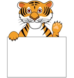 cute tiger with blank sign vector image vector image