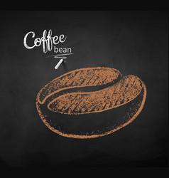 Chalk drawn sketch of one coffee bean vector
