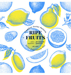 citrus fruits seamless pattern hand drawn vector image