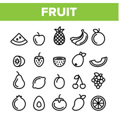 Collection nature fruit elements icons set vector