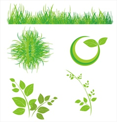 floral icons grass and leaves vector image