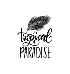 hand lettering poster with text tropical paradise vector image
