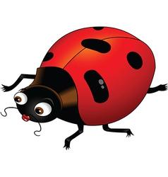 Ladybird cartoon vector