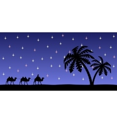 Man with camels in the night sky vector image