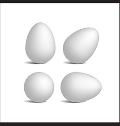 set realistic white eggs vector image