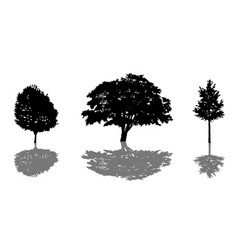 tree silhouette icon set with shadow vector image