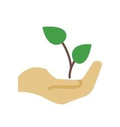 Plantation vector image