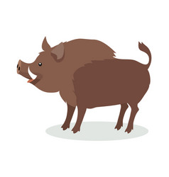 wild boar cartoon flat vector image vector image