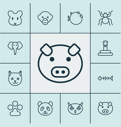 zoology icons set collection of spider bear vector image vector image