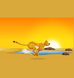 A cheetah running in the desert vector