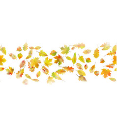 autumnal seamless background eps 10 vector image