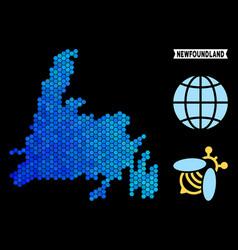 Blue hexagon newfoundland island map vector