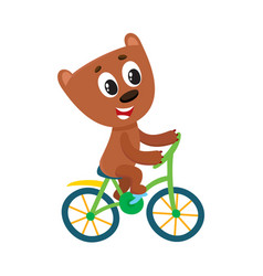 Cute little bear character riding bicycle cycling vector