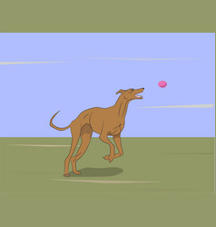 Dog running color vector