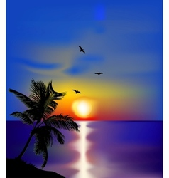 Sunset on sea with palms and birds vector