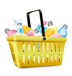 Basket With Detergent vector image vector image