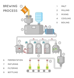 Beer process Brewing infographic or brewery vector image