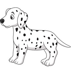 baby dalmatian dog breed vector image