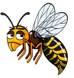 bee with sad face on white background vector image