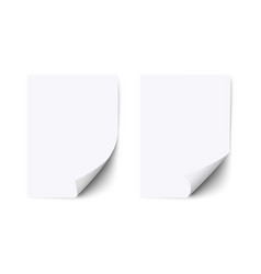 blank sheet white paper with curled corner and vector image