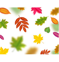 falling autumn leaves blur effect vector image