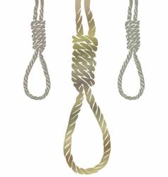 Gallows knot vector