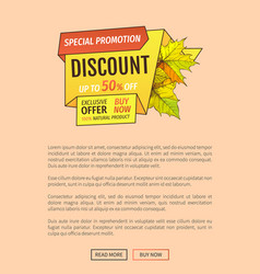 Special promotion discount thanksgiving day poster vector