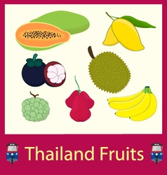 Thailand Fruits vector image