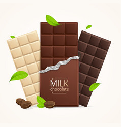 chocolate package bar blank - milk white vector image
