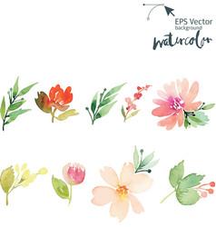 Watercolor cet vector