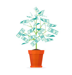 tree money in a pot vector image vector image