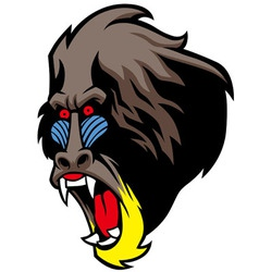 Angry baboon head vector
