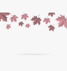 autumn pink maple leaf fall isolated on white vector image
