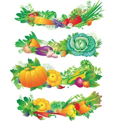 Banners with vegetables vector