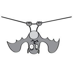 Hanging bat vector image
