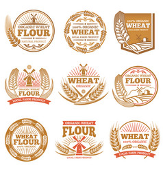 Organic wheat flour farming grain products vector