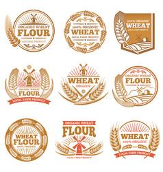 organic wheat flour farming grain products vector image