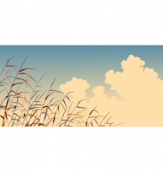 Reed sky vector