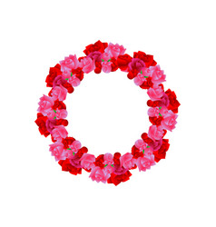 rose flower ornament decoration ready for vector image