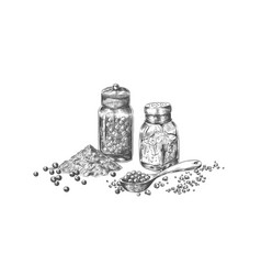 salt and pepper hand drawn mills with seasoning vector image