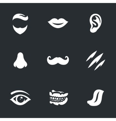 Set of Face parts vector image