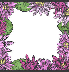 water lilies frame template vector image